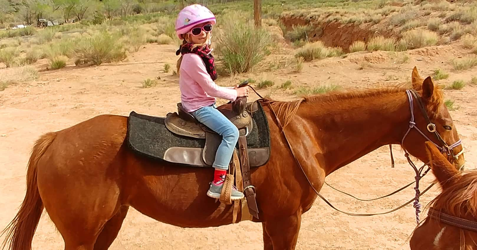 Taking children horseback riding